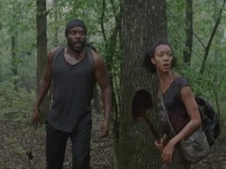 the walking dead seizoen 3 aflevering 8